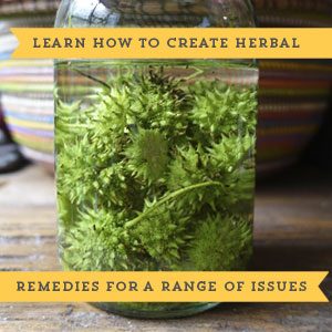 Medicinal Foraging Guides create herbal remedies herbs