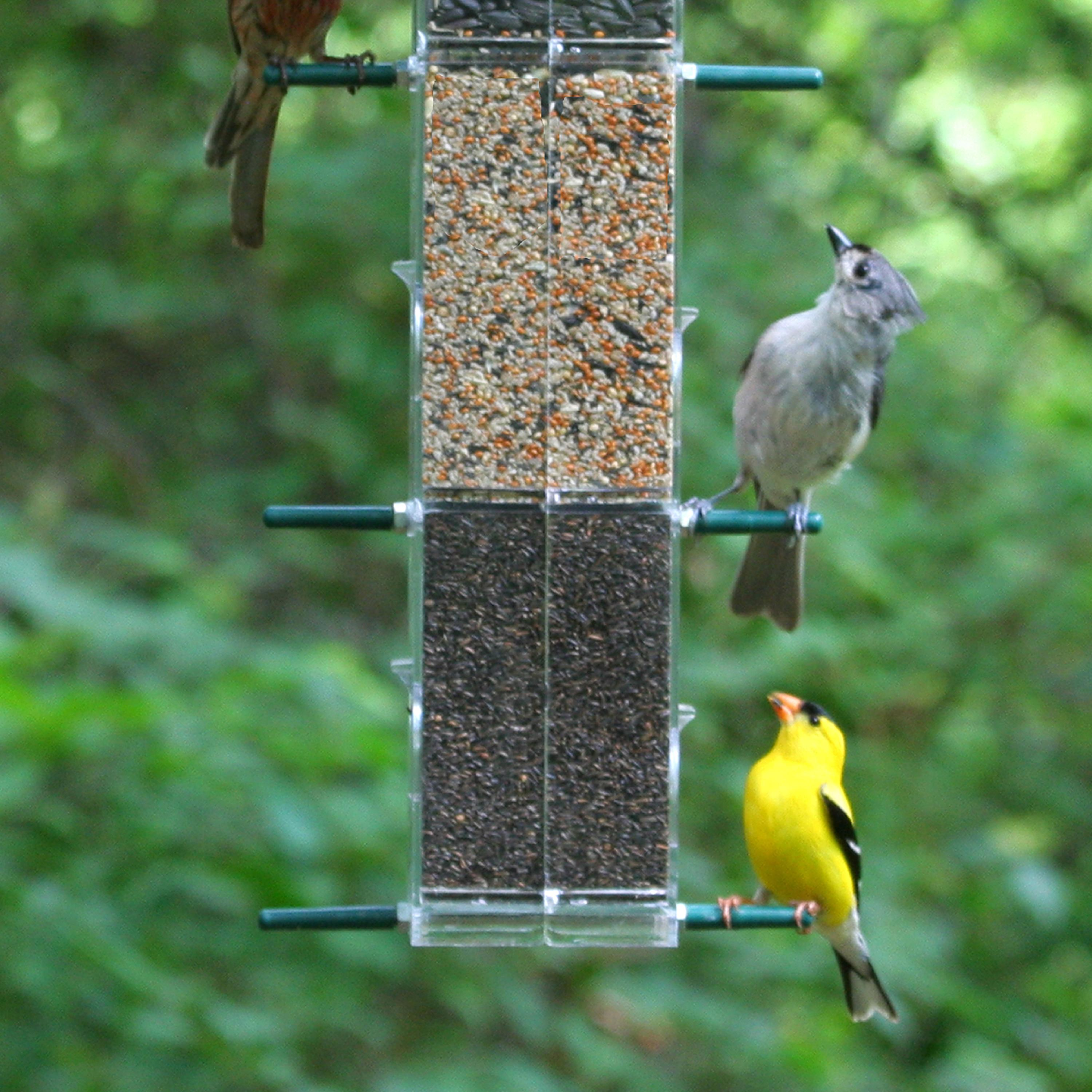 Wild Birds Unlimited Bird Food Bird Seed Bird Feeder .html