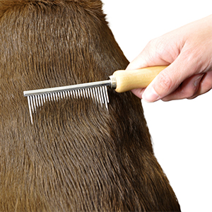 flea combs