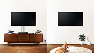 Samsung Q9F QLED 4K TV invisible connection