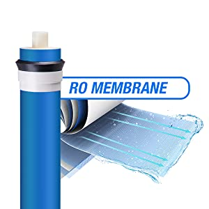 reverse osmosis system replacement filter