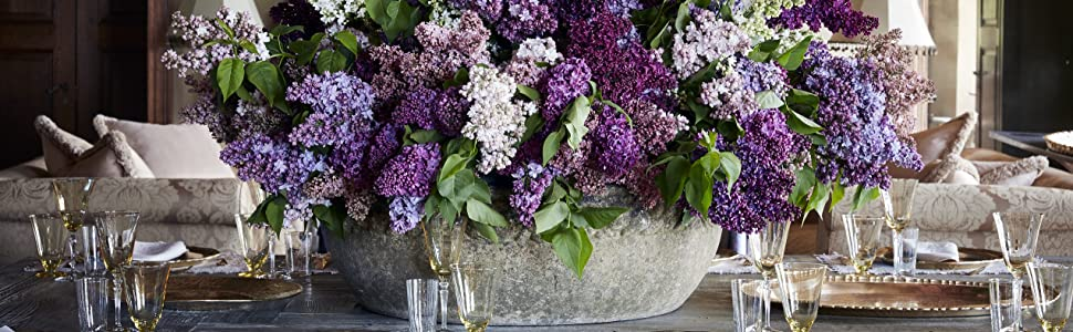 martha stewart;martha's flowers;flower arranging;gifts for florists;gifts for moms;flowers;garden