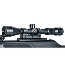 air rifle, pellet rifle, pellet airgun, bb airgun, 10 shot rifle, hunting rifle, pest control rifle