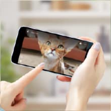pet camera video live streaming feature
