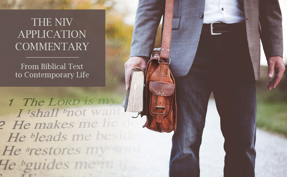 THE NIV APPLICATION COMMENTARY. From Biblical text to contemporary life.