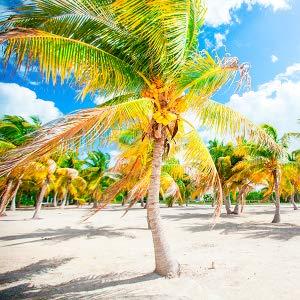 Travel Guide, Cuba Travel Guide