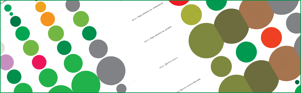 close up image of color chart showing tree crown size and color by tree by season
