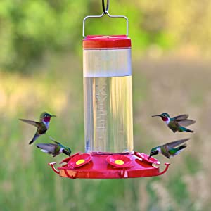 feeder classic htm hummingbird how throat glass hanging a first with hung eave hummingbirds level hummer oz plastic feeders at nature and ruby