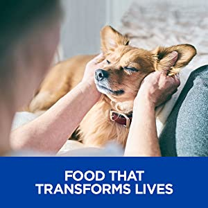 food that transforms lives dog canine