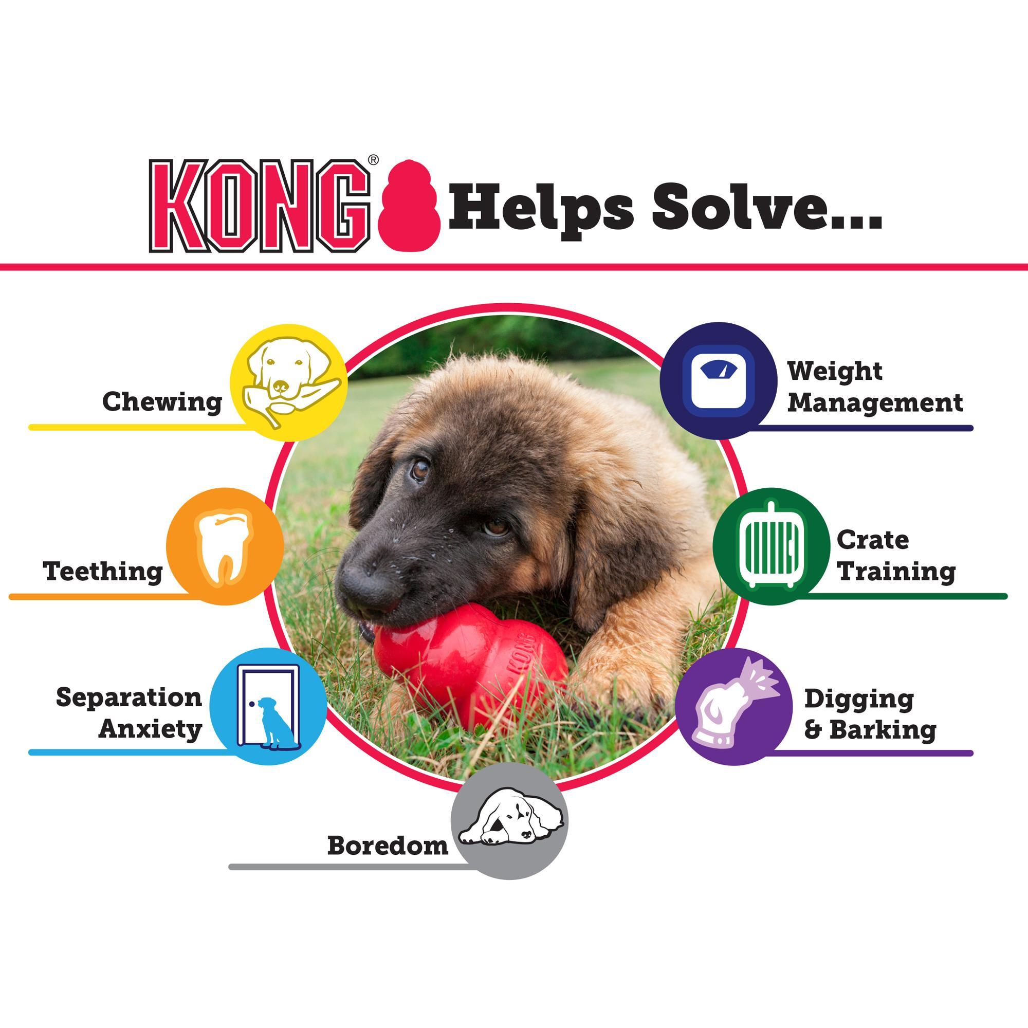 Pet Supplies : Pet Squeak Toys : KONG Air Dog Squeaker Bone Dog Toy ...