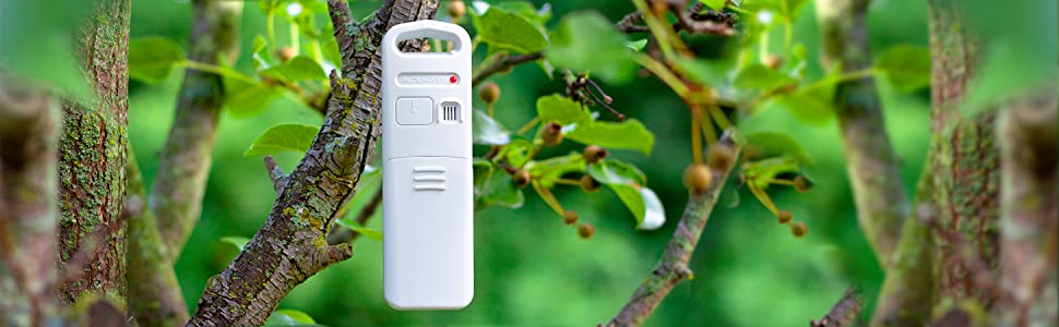 weather station, acurite weather station, future forecast, color weather station, thermometer