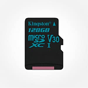 Kingston Canvas Go! SDCG2/32GBSP - Tarjeta MicroSD de 32 GB, Adaptador SD no Incluido
