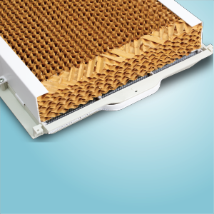High Efficient Honeycomb Pad with Anti-Microbial Property
