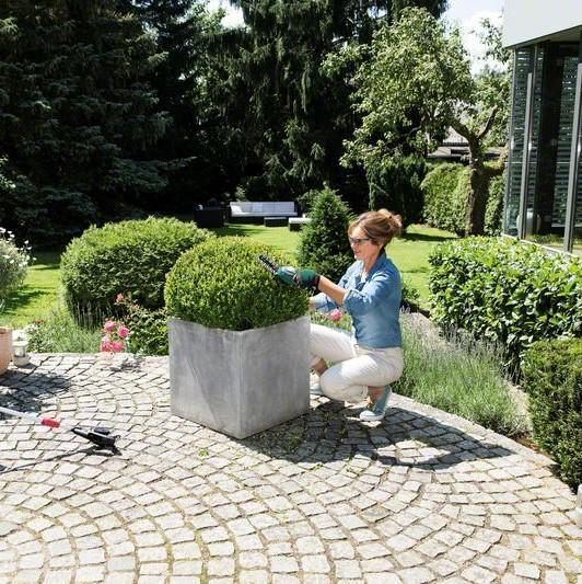 Bosch Cisaille Sculpte-Haies Et Taille-Herbes sans-Fil