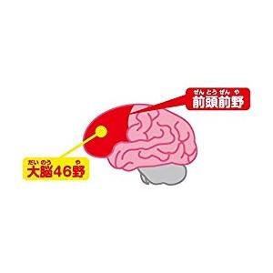 アンパンマン レッツゴー! 育脳ドライブ きみものれるよ! アンパンマンごう