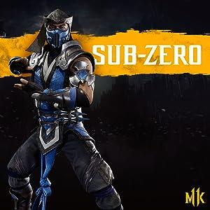 mortal kombat 11 banner sub zero