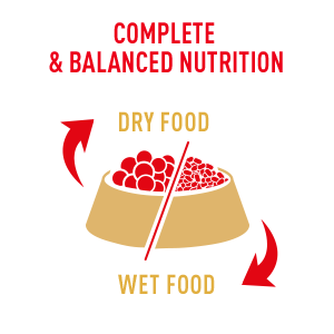 Royal Canin offers a combination of wet & dry dog food that provides complete and balanced nutrition