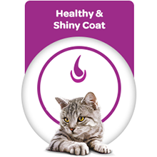 For Healthy and Shiny Coat