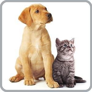 Soluzione ANIMAL CARE