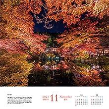 11月 秋の彩り