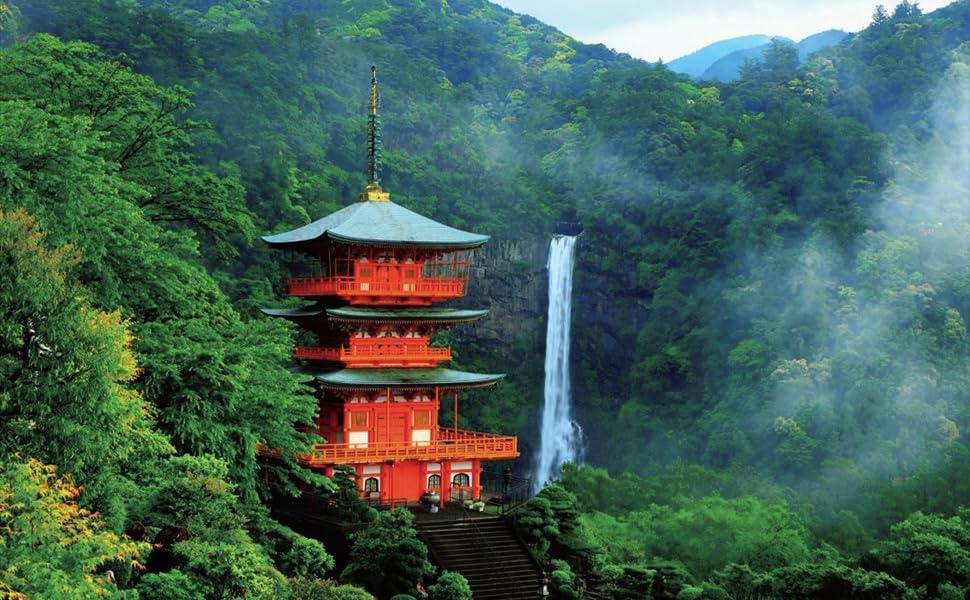 遺産 日本 世界