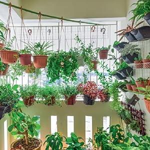 Why Urban Gardening