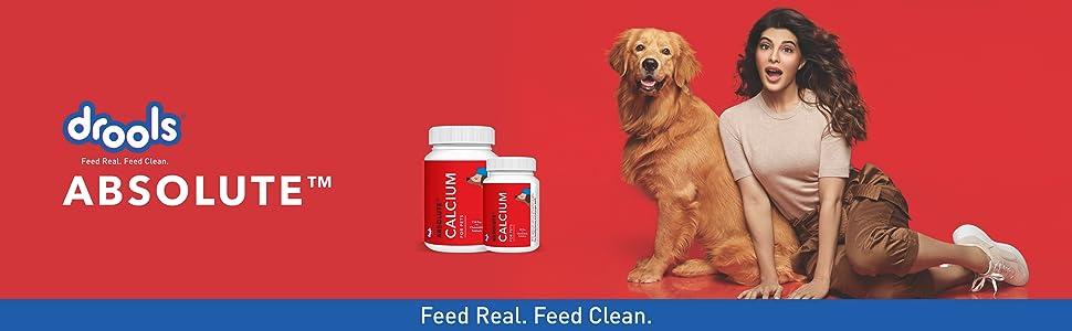 drools calcium supplement
