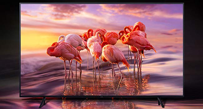 Samsung QLED 8K Q900 Series Smart TV with a colorful flamingo scene