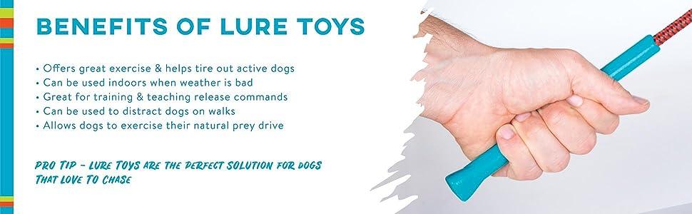 dog flirt pole, dog lure toy, tail teaser, interactive dog toy, outward hound tail teaser, dog chase
