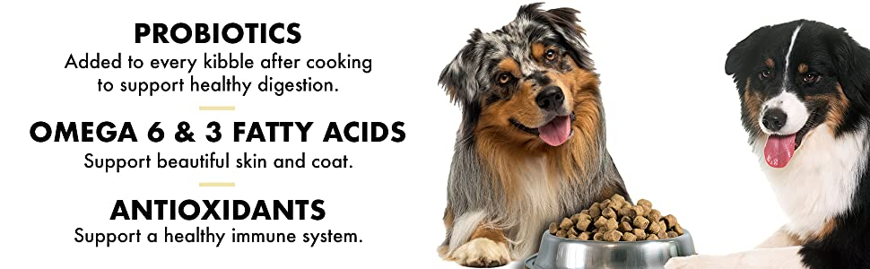 dog food for all dogs, dog food with probiotics, dog food with antioxidants