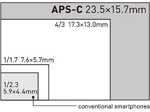 Large APS-C sized image sensor