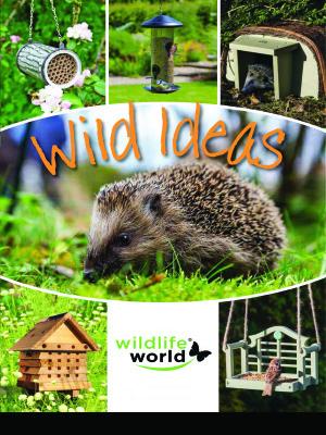 Wildlife World Solitary Bee tubes plexiglass Pack de 20