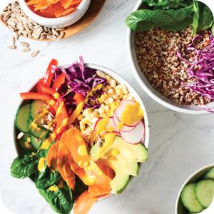Vegetarian cookbook,vegetarian,vegetable cookbook,easy vegetarian cookbook,vegetarian cookbooks
