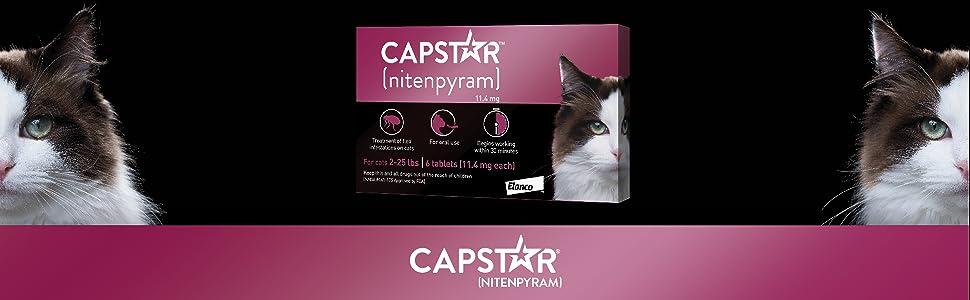 nitenpyram; cat flea treatment; cat flea and tick treatment; capstar cat; capstar for cats; cat flea