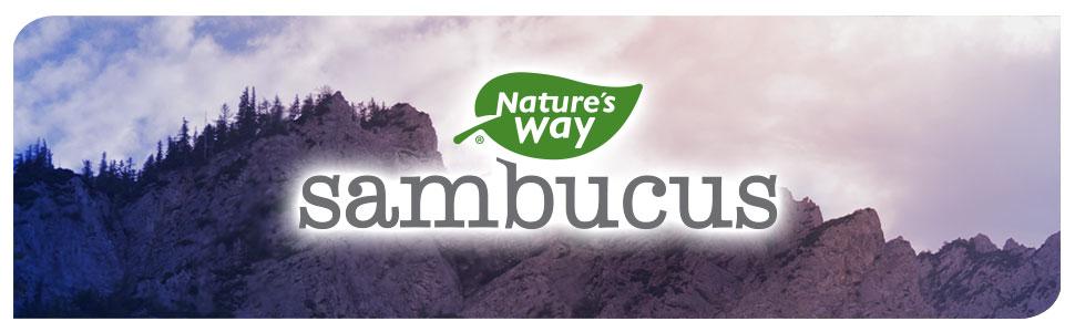 Nature's Way Sambucus