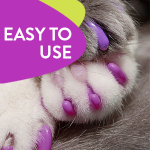 Simple, easy to follow steps can get your cats nails done and guarantee a scratch