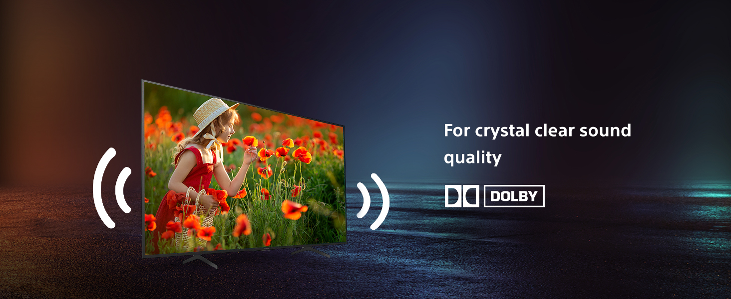 Dolby Audio Support