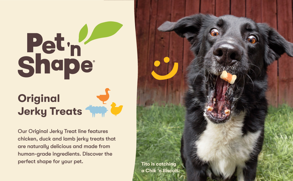 jerky treats, dog jerky, dog treats, dog foods, pet n shape, pet treats, treats