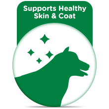 Supports Healthy Skin & Coat
