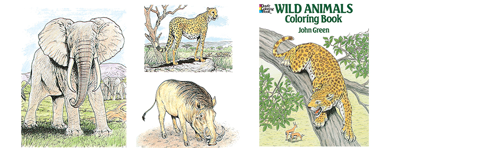 Wild Animals Coloring Book (Dover Nature Coloring Book): John Green:  9780486254760: Amazon.com: Books