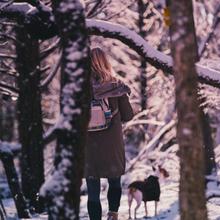 Dont Hibernate, Love Winter