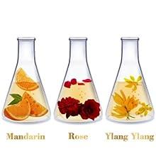 lavender lemongrass jasmine mandarin rose ylang peppermint tea tree rosemary lemon essential oils