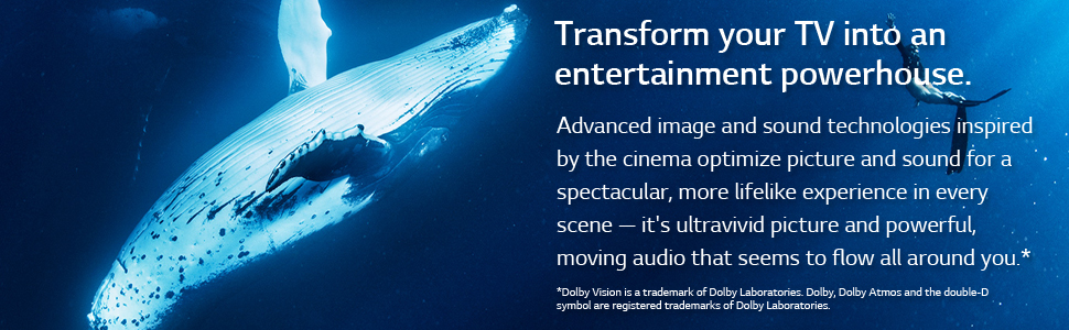 dolby atmos dolby vision