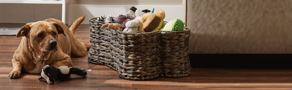 Hyacinth Pet Bone Shape Basket holding various pet accessories in the living room.