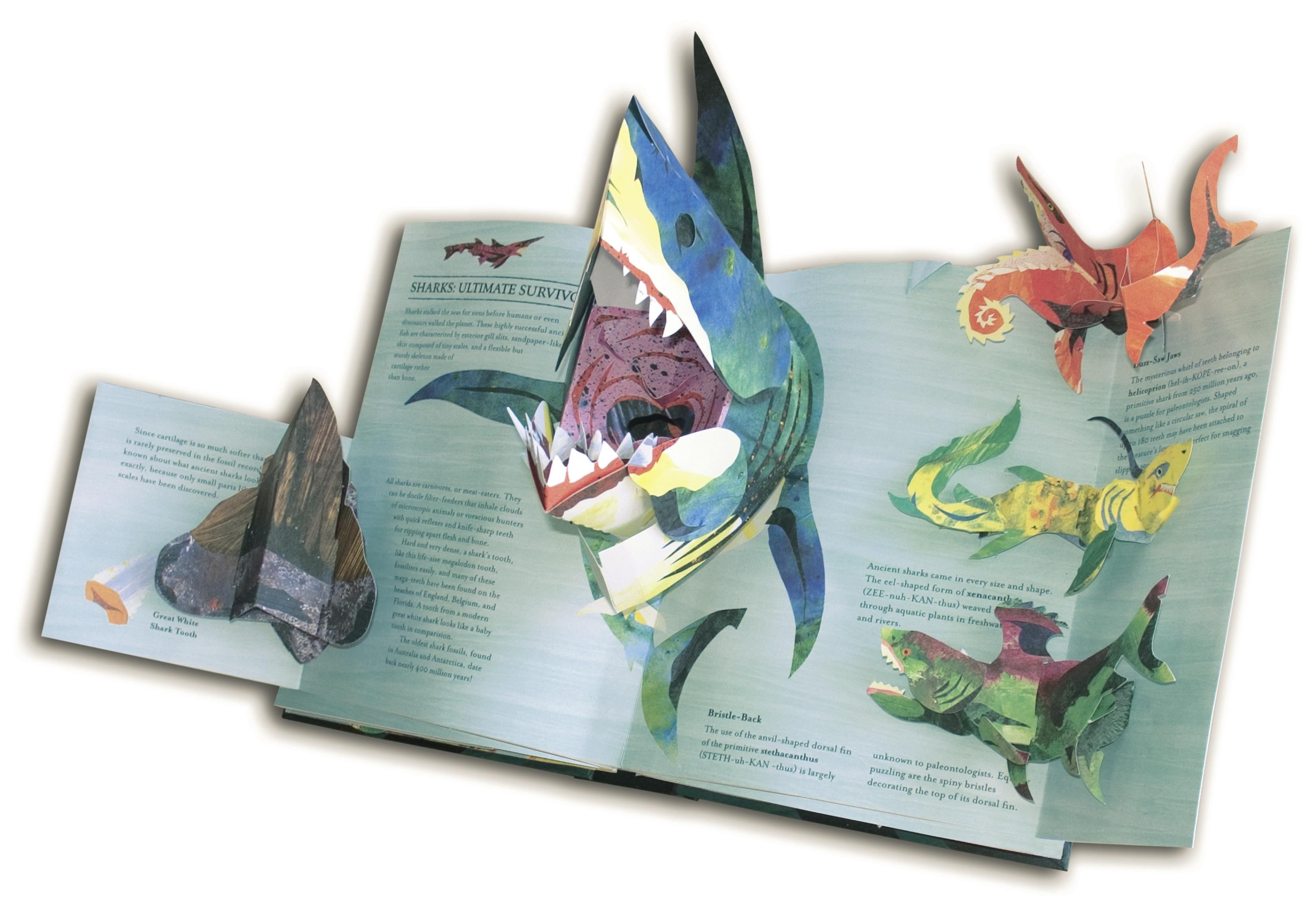 Encyclopedia Prehistorica Sharks And Other Sea Monsters Robert Origami Dinosaur Diagrams Claudia39s Room Pinterest From The Publisher