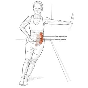 Intermediate Lower-Trunk Lateral Flexor Stretch