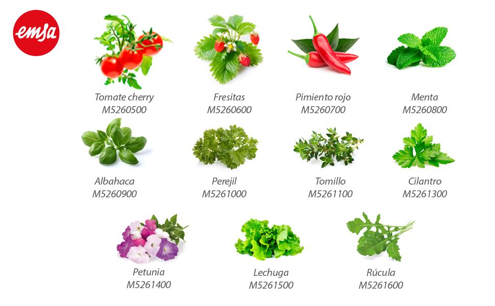 Emsa m5261900 Click & Grow Smart Garden 3 Jardín de Interior ...