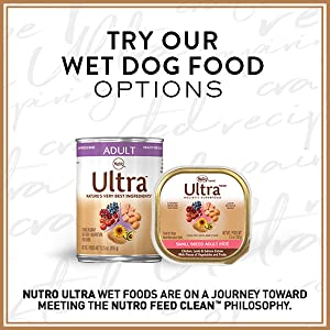 wet, dog, food, wet dog food