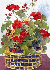 spring;summer;red;geranium;flower;floral;potted