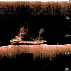 Raymarine Dragonfly 5PRO Sonda de Pesca GPS y CHIRP DownVision ...